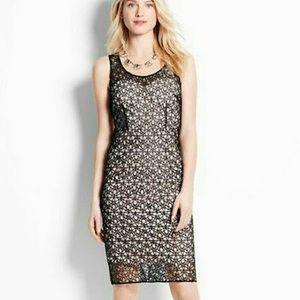 Ann Taylor Lace overlay dress